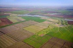Государственный кадастр земель